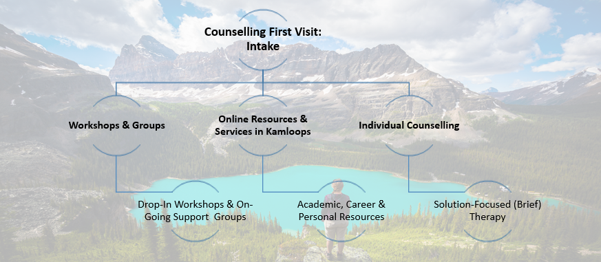 counselling intake v2