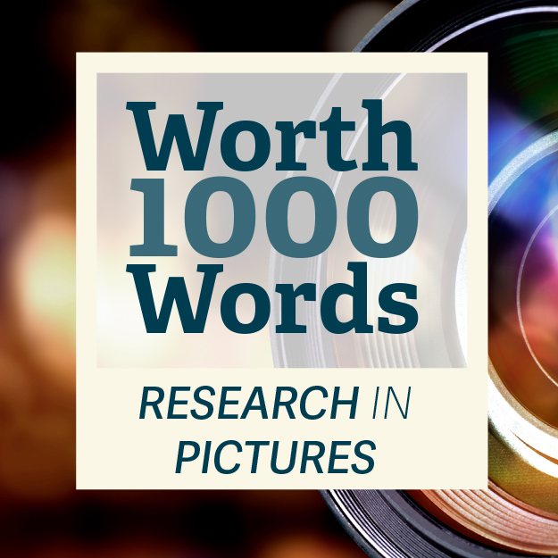 Worth 1000 Words: Research in Pictures